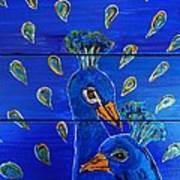 Peacock Vi Poster