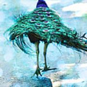 Peacock Walking Away Poster
