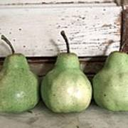 Pear Trio Poster