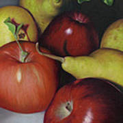 Pears And Apples Poster by Natasha Denger