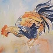 Pecking Poster