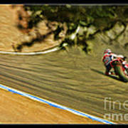 Pedrosa Though The Trees Poster