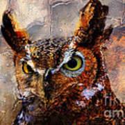 Peeking Owl Poster
