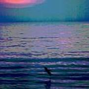 Pelican At Sunrise - Outer Banks Poster