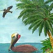 Pelicans Palm Trees Tropical Birds Cathy Peek Poster
