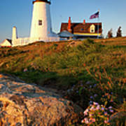 Pemaquid Point Lighthouse Poster by Brian Jannsen