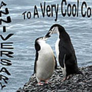 Penguin Anniversary Card Poster