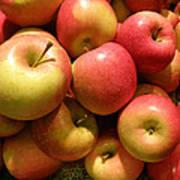 Pennsylvania Apples Poster