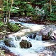 Pennsylvania Creek Poster