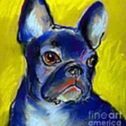 Pensive French Bulldog Portrait Poster