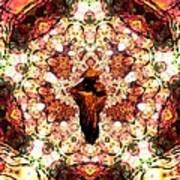 Pentagrammathanatos Severe Beauty Poster
