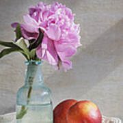 Peony Blue Bottle And Nectarine Poster