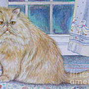 Persian Cat In Kitchen Poster