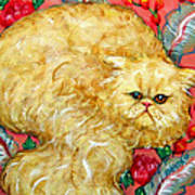 Persian Cat On A Cushion Poster