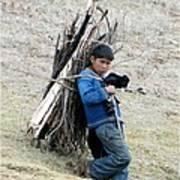 Peruvian Boy Gathers Wood Poster