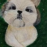 Pet Dog Poster by Kat Poon