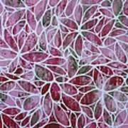 Petals In Pink Poster
