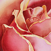 Petals Petals I Poster