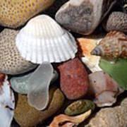 Petoskey Stones Lv Poster