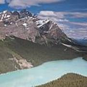 Peyto Lake And Caldron Peak Poster