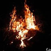 Phoenix Se Levant Des Flammes Poster