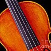 Photograph Of A Upper Body Viola Violin In Color 3369.02 Poster