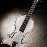 Photograph Of A Viola Violin Spotlight In Sepia 3375.01 Poster