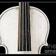 Photograph Or Picture Viola Violin Body In Sepia 3367.03 Poster