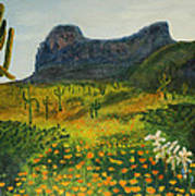 Picacho Poppies Poster