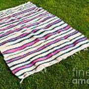 Picnic Blanket Poster