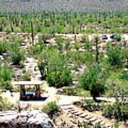 Picnic In The Desert Poster