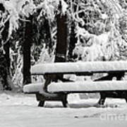 Picnic Table In The Snow Poster