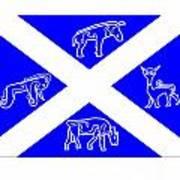 Pictish Scotland Flag Poster