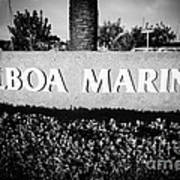 Pictue Of Balboa Marina Sign In Newport Beach Poster