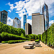 Picture Of Chicago Skyline With Millennium Park Trees Poster