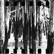 Pier Pilings Black And White Poster