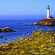Pigeon Point Lighthouse Panoramic Poster