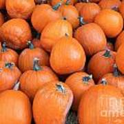 Piles Of Pumpkins Poster