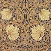 Pimpernel Wallpaper Design Poster