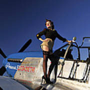 Pin-up Girl Standing On The Wing Poster
