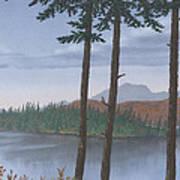 Pine Island Poster
