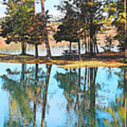 Pine Tree Water Reflections Poster