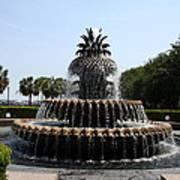 Pineapple Fountain Charleston River Park Poster