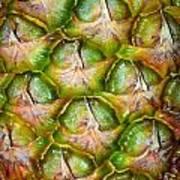 Pineapple Skin Poster
