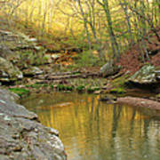 Piney Creek Reflections Poster