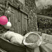 Pink Buoy  Poster