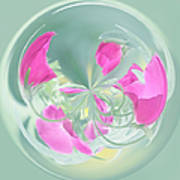 Pink California Poppy Orb Poster