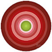 Pink Circles Poster by Frank Tschakert