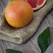 Pink Grapefruit Poster