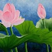Pink Lotus On Blue Sky Poster